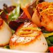 Gegrillte Jakobsmuscheln auf buntem Salatbeet