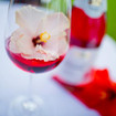 Hibiskusblüten-Spritzer