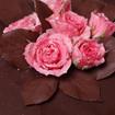 Kandierte Rosen